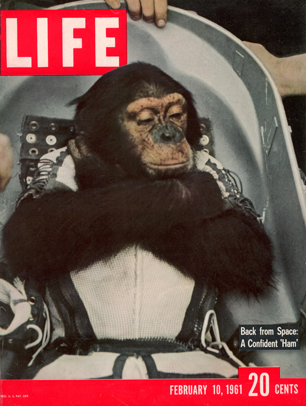 LIFE cover 02-10-1961 Chimpanzee named Ham in space capsule after returning from the Mercury Redstone 2 space flight, from AP.